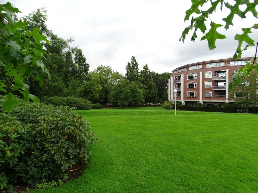 Reesink Hoveniers Soest - Tuin- en parkonderhoud