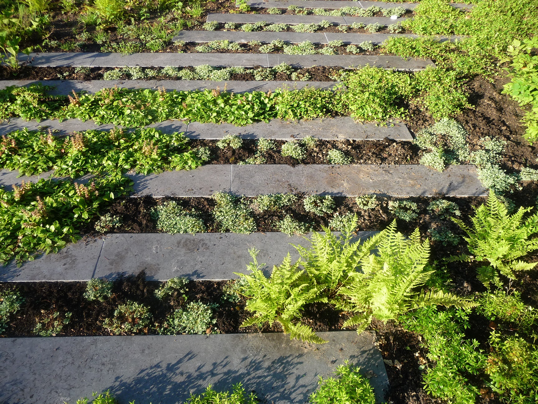 Tuin aanleggen in bussum