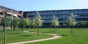 Tuinontwerp Soest park Residence Soevereine