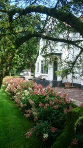 Tuinaanleg en tuinonderhoud Hilversum