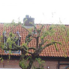 Tuinontwerp Harderwijk Oud