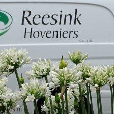 Bedrijfstuinen van Reesink Hoveniers in Zeewolde, Harderwijk, Soest en Bilthoven