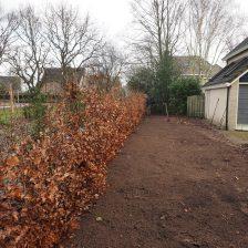 Tuinaanleg en beplanting Harderwijk