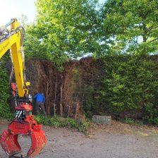 Hoveniersbedrijf Zeewolde vervangt coniferenhaag