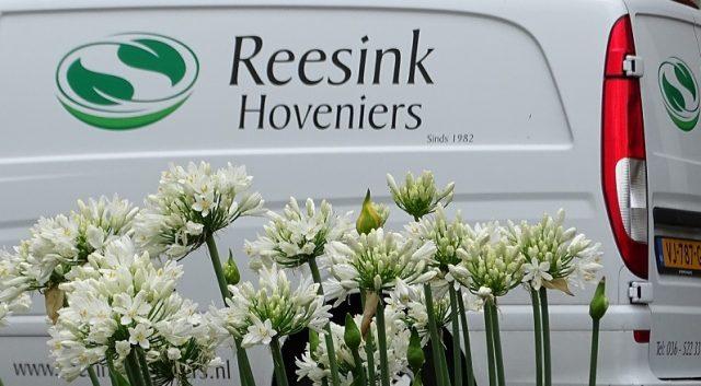 Reesink Hoveniers