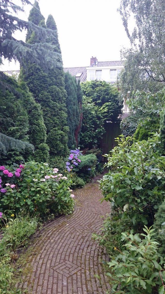 Tuinonderhoud Utrecht
