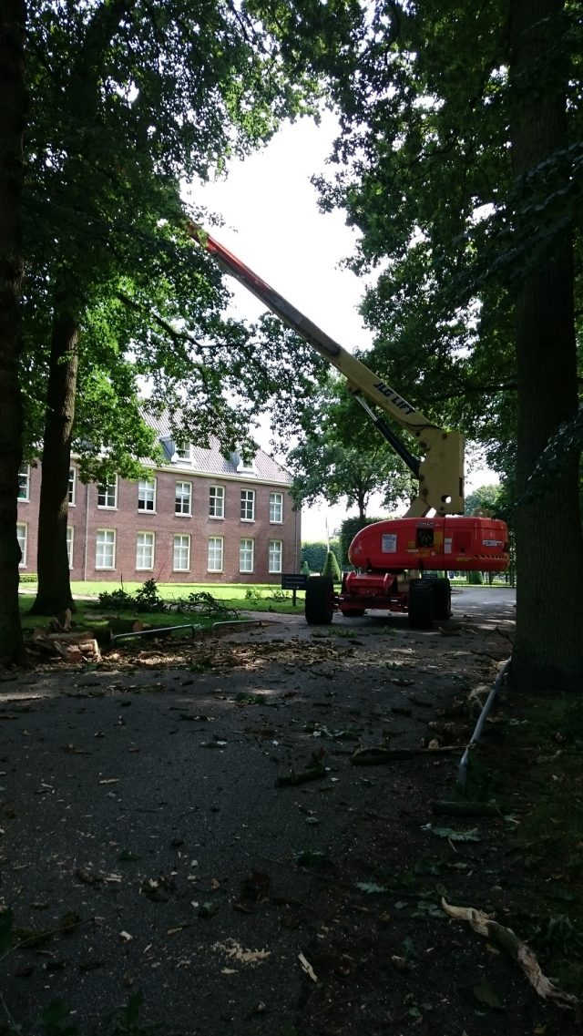 Boomverzorging in De Bilt - Bilthoven