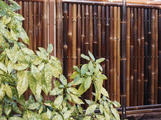 Bamboe tuinafscheiding