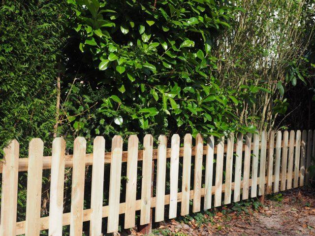 Tuinhekjes in Bilthoven